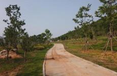 曲阜尼山尼山环湖北路工程收尾 预计9月10日全线完工